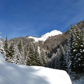 D-0487-winterwald-valser-tal-schnee.jpg