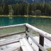 D-IMG_1507-Naturlehrpfad_Antholzer_See.JPG