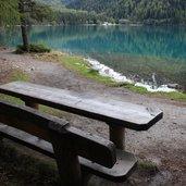 D-IMG_1524-Naturlehrpfad_Antholzer_See.JPG