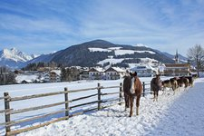 Oberolang Winter Valdaora di Sopra inverno